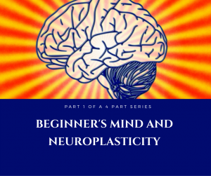 brain graphic to illustrate the concept of beginner's mind and neuroplasticity