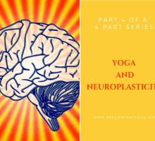 yoga and neuroplasticity