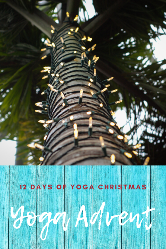 palm tree wrapped in Christmas lights illustrating yoga advent