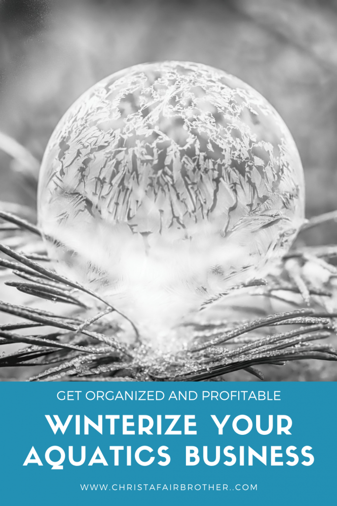 frozen soap bubble on pine needles to illustrate how to winterize your aquatics instructor business